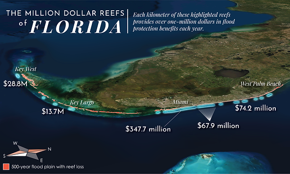 A map showing the coral reefs of Florida that provide over one million dollars of estimated flood protection benefits each year. Map created in collaboration with Jessica Kendall-Bar and Chris Lowrie using data from UCSC's Coastal Resilience Lab: Reguero et al. 2019.