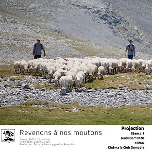 revenons a nos moutons.jpg