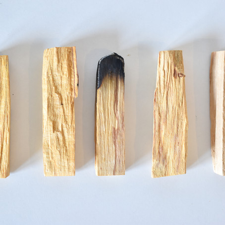 Les alternatives au Palo santo