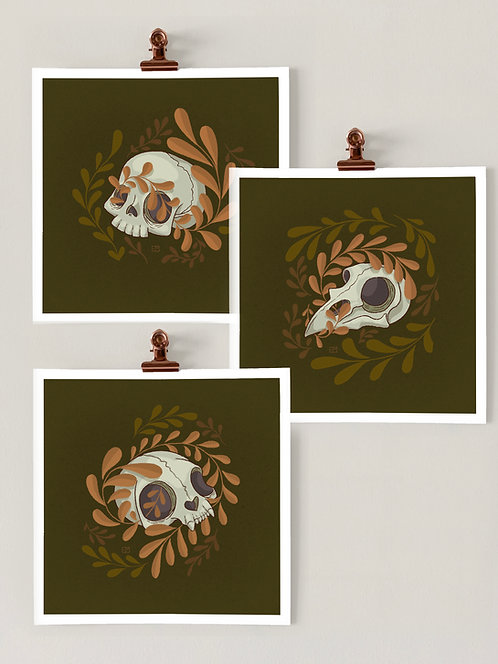 Set of 3: Mini Skulls Art Prints