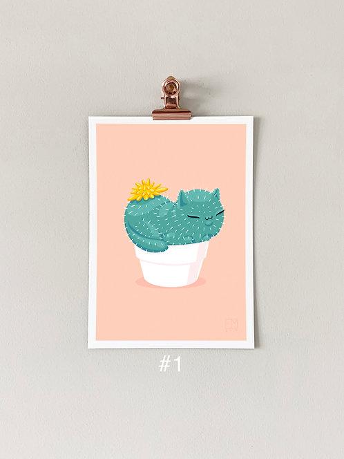 Catcus Individual Art Print