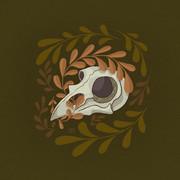 Mini Bird Skull