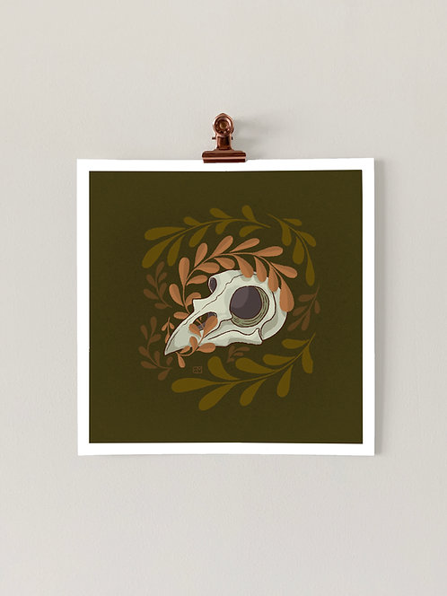 Mini Bird Skull Art Print