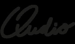 Qudio_logo_02.png