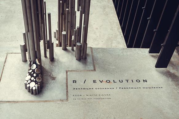 Evolyutsiya-soznaniya-revolyutsiya-myshd