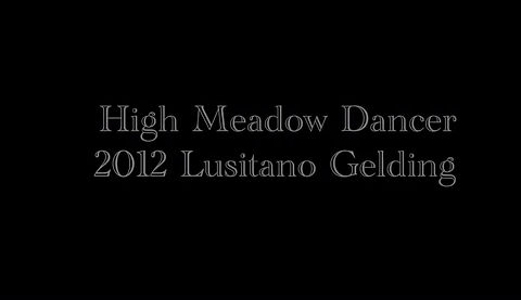 High Meadow Dancer