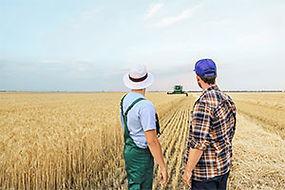 societe_agricole_mai_2021_Lettre-des-notaires-de-France-300pix.jpg