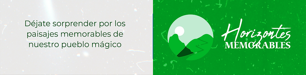 banners inicio-59.png