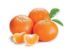 Tangerine_of_Trust.jpg