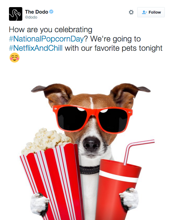 "Twitter screenshot from The Dodo that reads ""How are you celebrating National Popcorn Day? We're going to Netflix and Chill with our favorite pets tonight."""