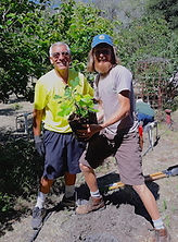 orchardWorkday20190629_MannyAndGabrielPl