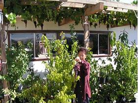 2006ChoungGrapes.png