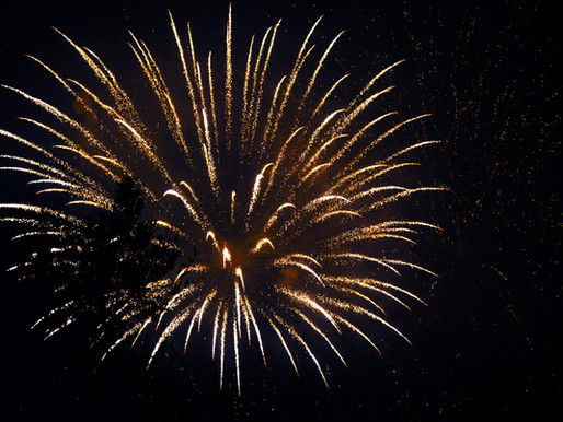 HELP YOUR DOG COPE WITH FIREWORKS