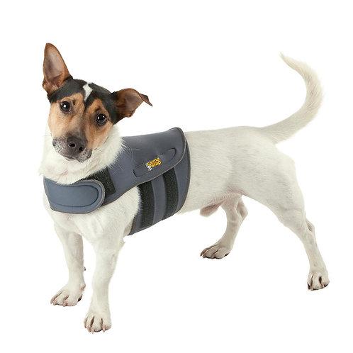 KarmaWrap – A calming hug to help reduce dog anxiety