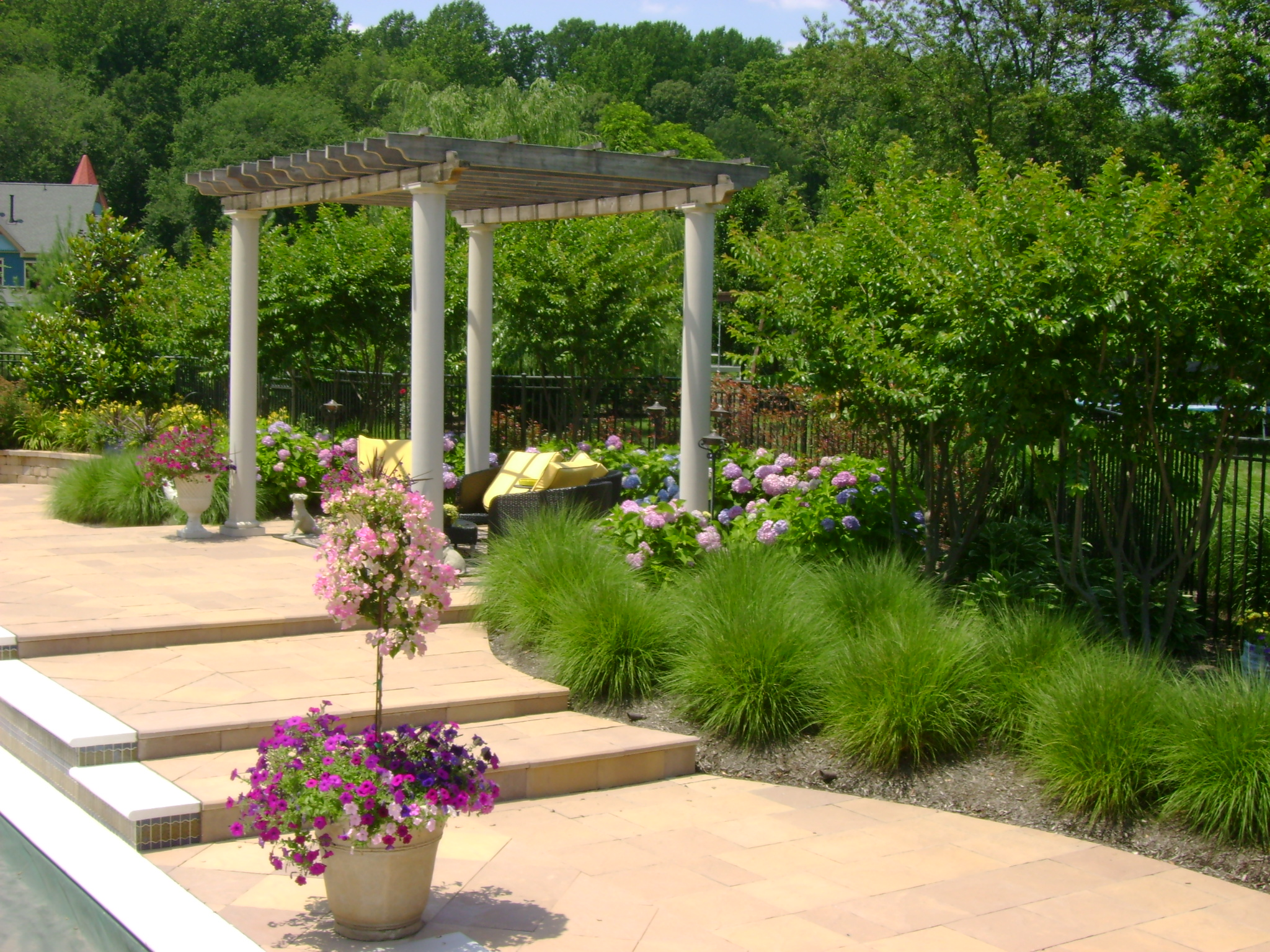 Pergola Steps Pavers Plants
