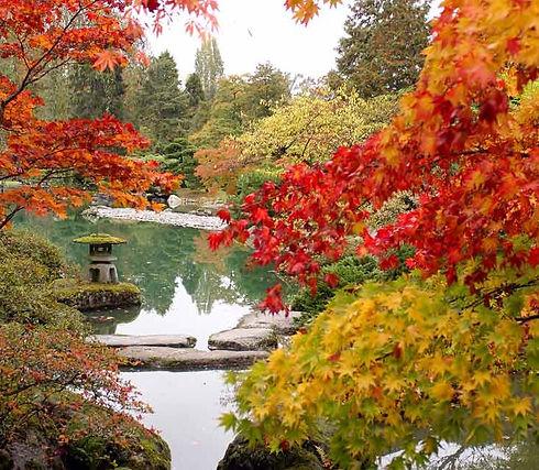 Autumn%20Pond%20_edited.jpg