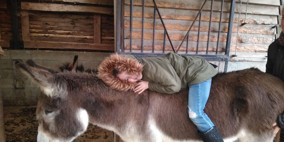 Ouder-Kind: Winterklaar maken: verwarmen aant vuur en de ezel
