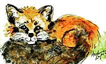 fox%20clever_edited.jpg