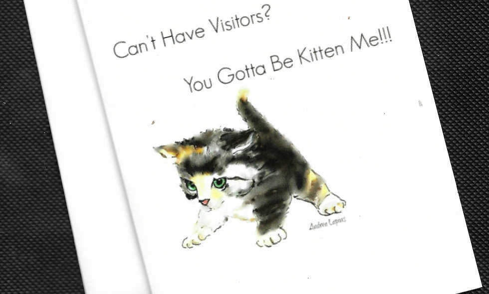 No Visitors?  You Gotta Be Kitten Me!