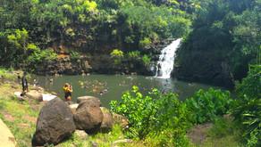 Hawaii für Anfänger – Gestrandet in Magnums Wohnzimmer