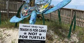 Environmental Art Sculpture Creates Awareness for Sea Turtle Protection