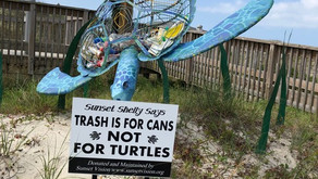 Environmental Art Sculpture Creates Awareness for Sea Turtle Protection