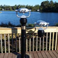 Commercial-grade binoculars