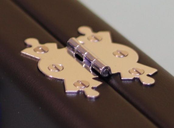 Case Hinges (Silver)