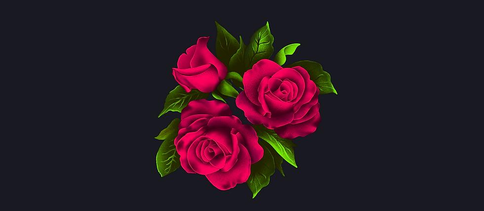 Présentation_Illustration_roses_.png
