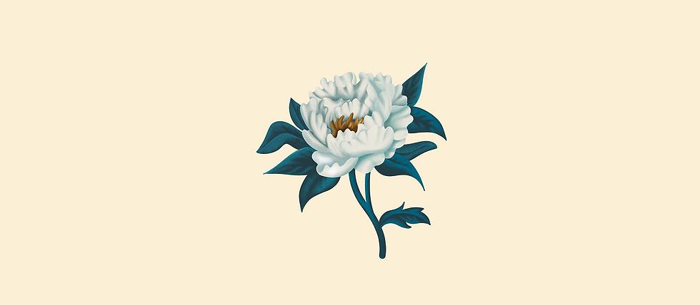 Présentation_Illustration_.png