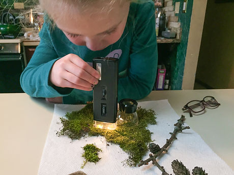 Microscope.Kid.Moss.Botany.jpg