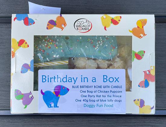 Birthday in a Box - Blue