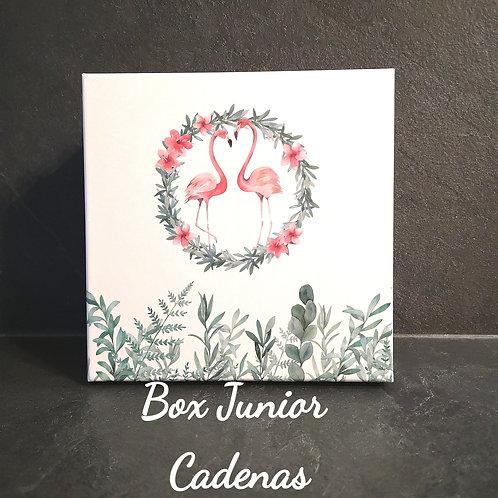 Box Junior Rosée, Collier cadenas +trousse python rose