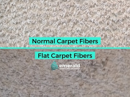 What is The Most Important Step in Carpet Cleaning?