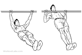 Exercise, Injury & Illness