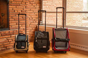Snoozer Travel Carrier - Medium - Black-PICK UP ONLY