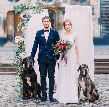 puppy, puppy training, puppy trainer, dog, dog training, dog trainer, wedding, pet sitting, preston, lancashire,dog training classes preston, dog training preston, puppy training classes preston, puppy training classes, dog training,dogs at weddings, dog wedding, pets at weddings