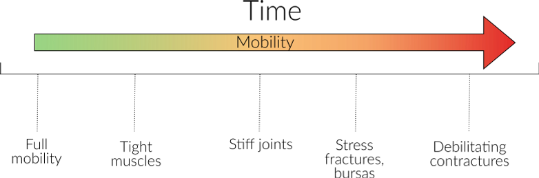 CMT mobility over time