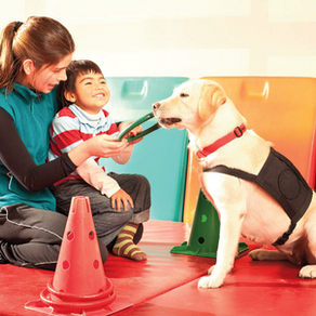 Pet Therapy Intervention Impact on Autism Spectrum Disorder