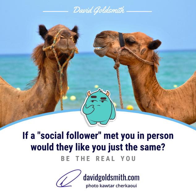 00051 INSTA Social Camel Be The Same You