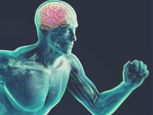 ¿Cómo afecta el ejercicio físico en tu cerebro?