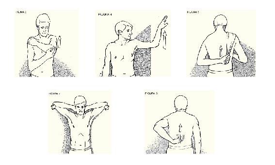 Estiramientos hombro-01.jpg