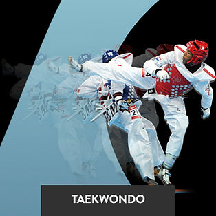 Clases de Taekwondo en Cercedilla, clases de artes marciales Cercedilla, karate Cercedilla, artes marciales para niños Cercedilla.
