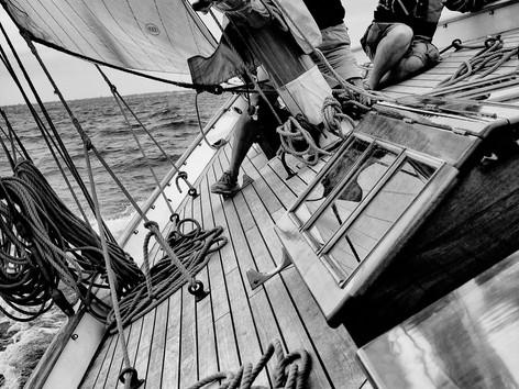 Onboard Sayonara