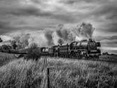 Queen's Bithday Steam Train