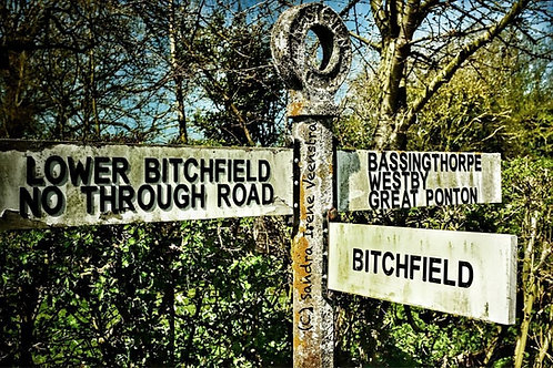 So this is where you come from - Bitchfield