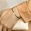 Thumbnail: Armband katoen met gouden hartje