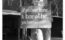 ny-breathe.jpg