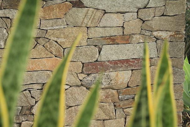 Landscaping sutherland shire, landscaping sydney, garden design sydney