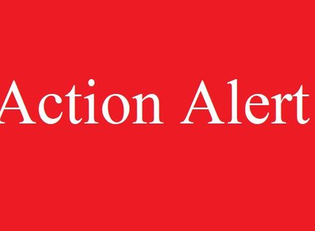 ACTION ALERT: Write to your MP to urge protecting civilians in northwest Syria